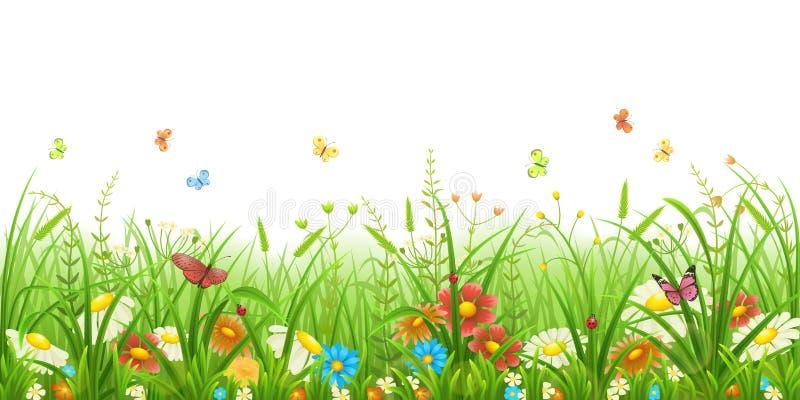 Grama verde e flores imagens de stock
