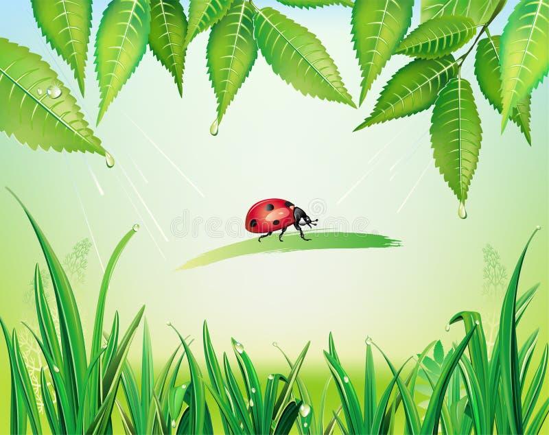 Grama verde e folhas ilustração do vetor