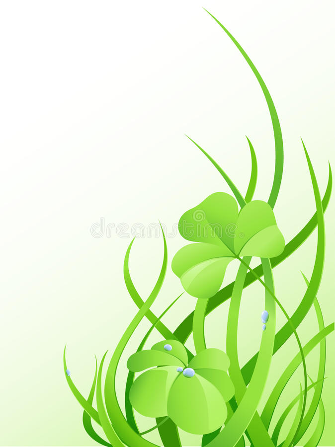 Grama verde e folhas do trevo ilustração do vetor