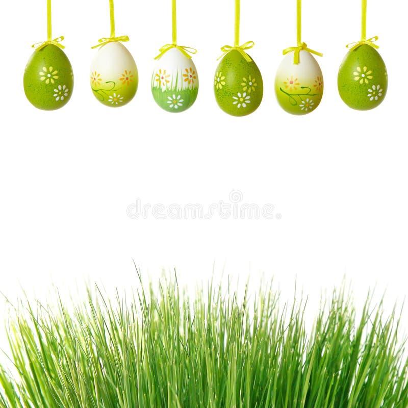 Grama verde e ovos de easter fotos de stock