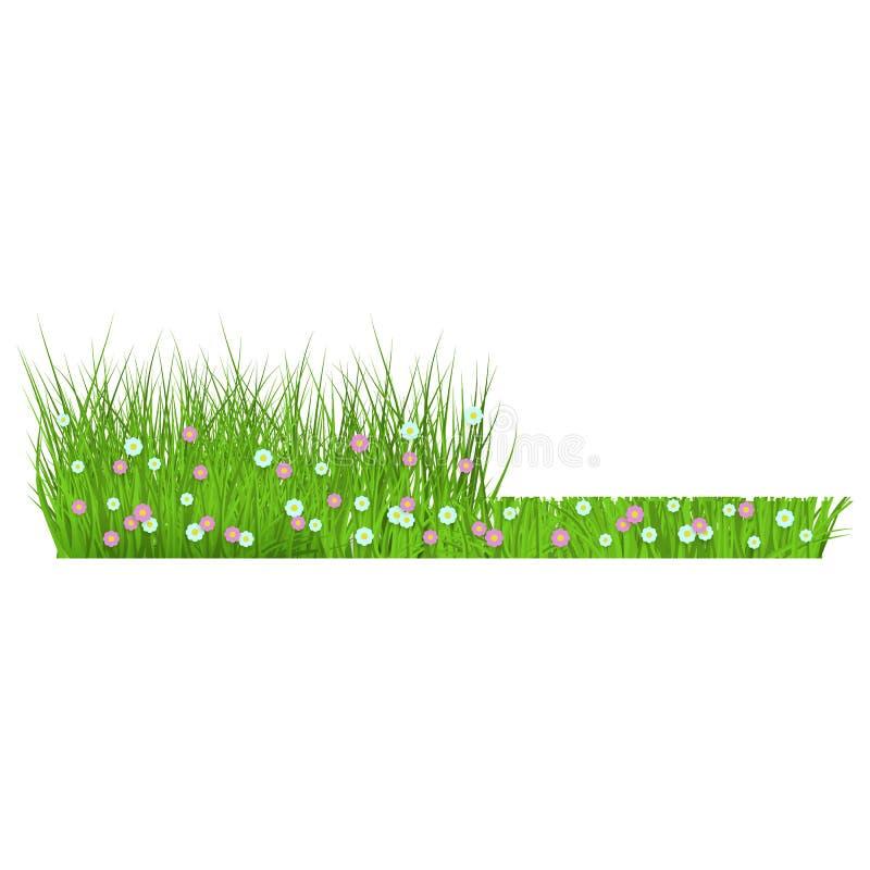 Grama verde floral da mola e beira do gramado antes e depois da sega ilustração stock