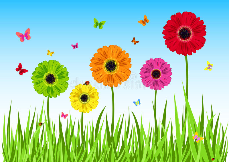 A grama verde floresce a borboleta ilustração stock