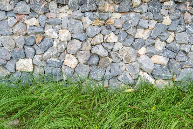Grama verde fresca com fundo da parede de pedras foto de stock