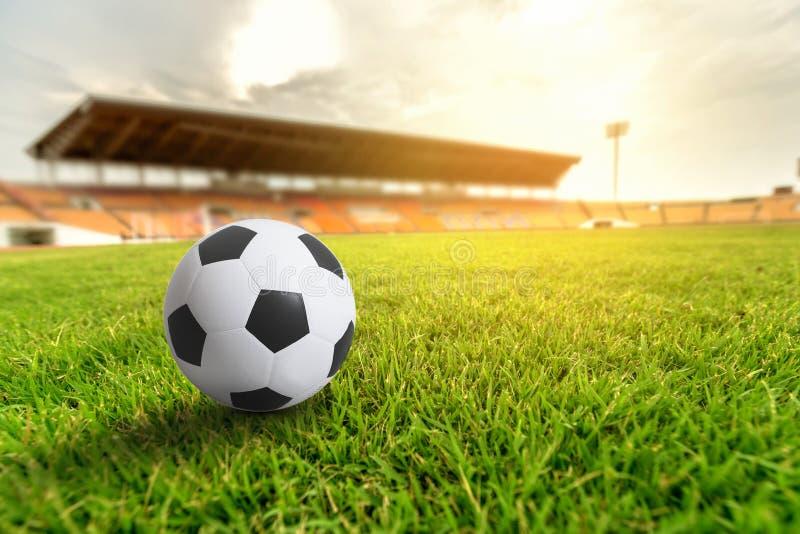 Grama verde no estádio de futebol com alargamento claro imagem de stock