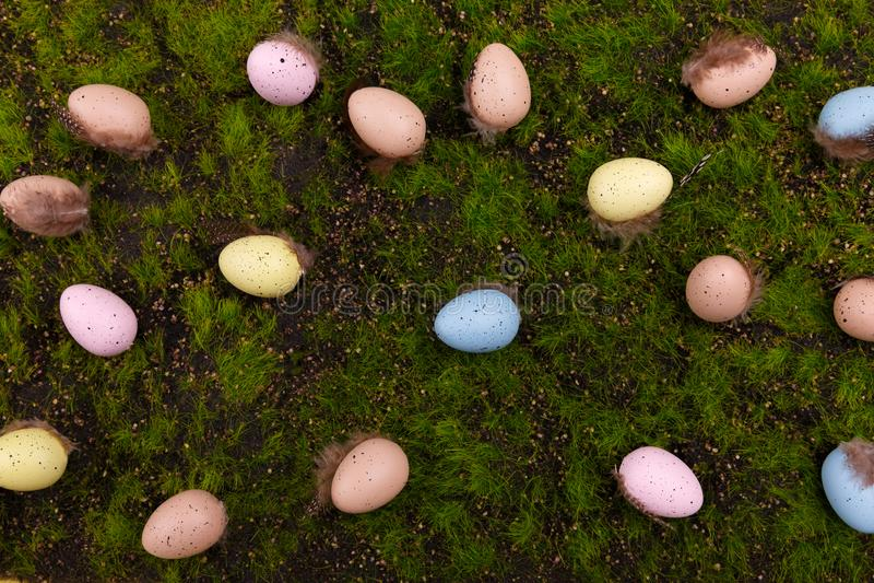 Grama verde Ovos do colorfull da Páscoa imagem de stock
