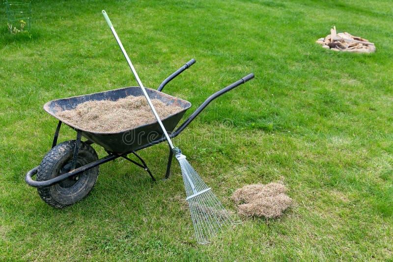 Gramado de Dethatching com um jardim da remoção do musgo do ancinho na primavera fotos de stock royalty free