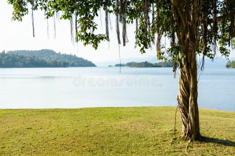 Gramados ajardinados para o lazer em um lago Kaeng Kra Chan foto de stock royalty free