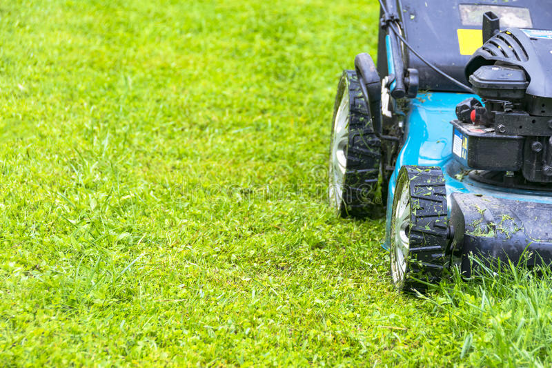 Gramados de sega, cortador de grama na grama verde, equipamento da grama da segadeira, ferramenta de sega do trabalho do cuidado  fotos de stock royalty free