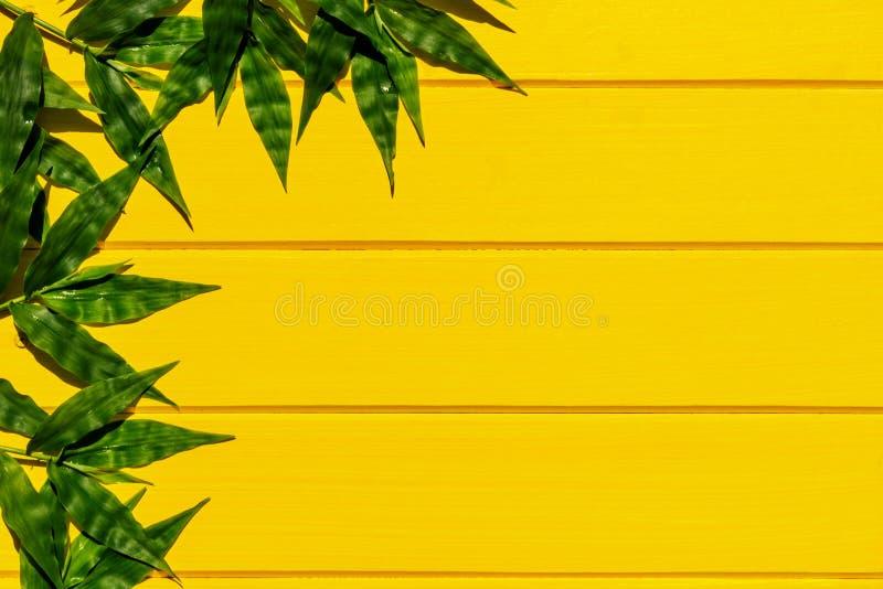 Gramas verdes tropicais na opini?o superior do fundo de madeira amarelo imagens de stock royalty free