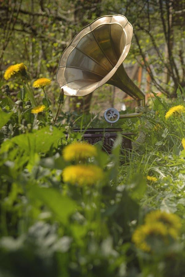 Gramofone no jardim fotografia de stock royalty free