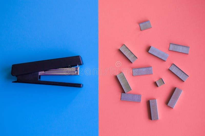 Grampeador e clipes de papel engraçados no fundo vívido azul e vermelho fotografia de stock royalty free