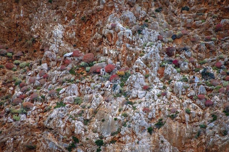 Gramvousa Peninsula in Greece. Rocky sea shore of Gramvousa Peninsula on the Crete Island in Greece royalty free stock images