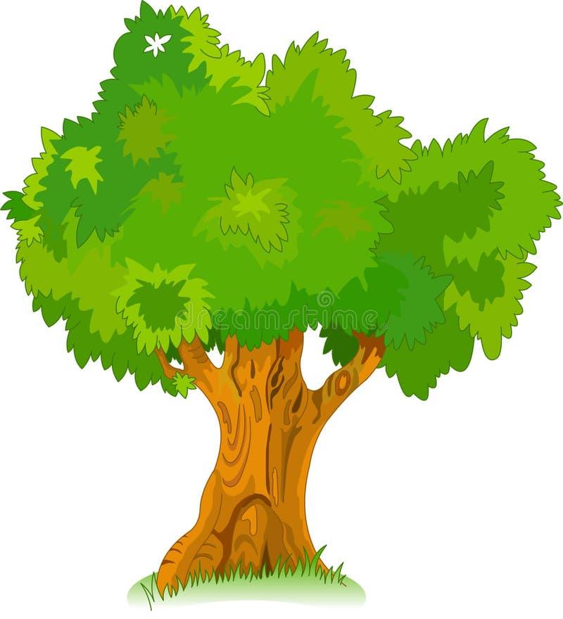 Gran árbol viejo para su diseño libre illustration