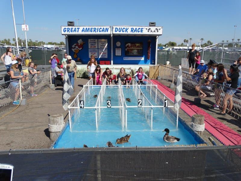 Gran americano Duck Races 2014 fotografía de archivo