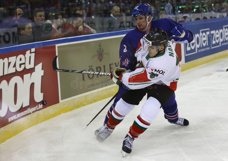 Gran Bretaña contra la estera del hockey sobre hielo del campeonato del mundo de Hungría IIHF fotografía de archivo libre de regalías