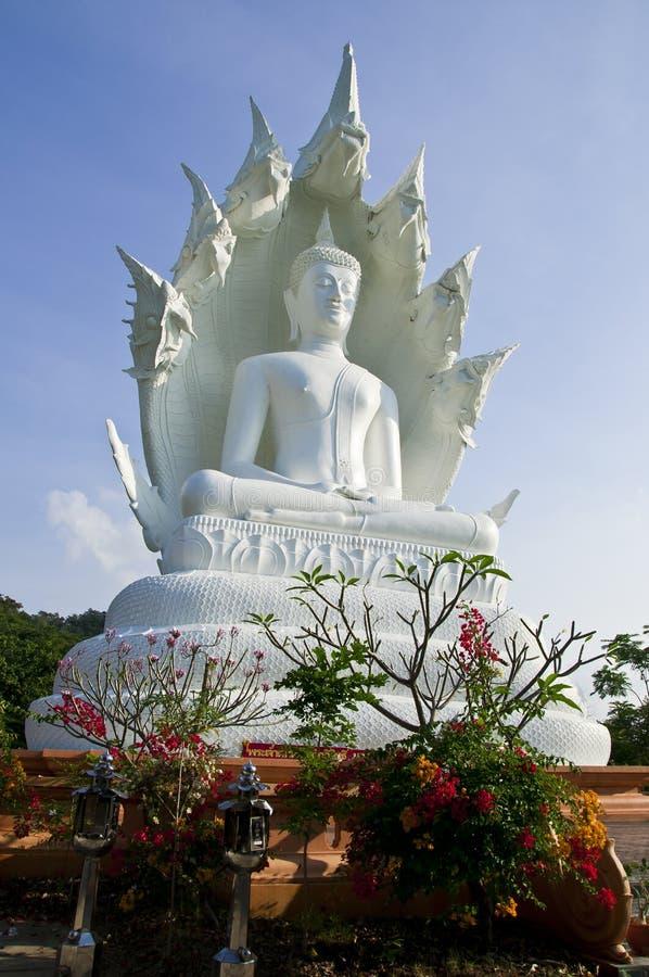 Gran Buddha blanco. fotos de archivo