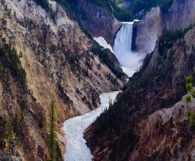 Gran Cañón del parque nacional de piedra amarillo imagen de archivo