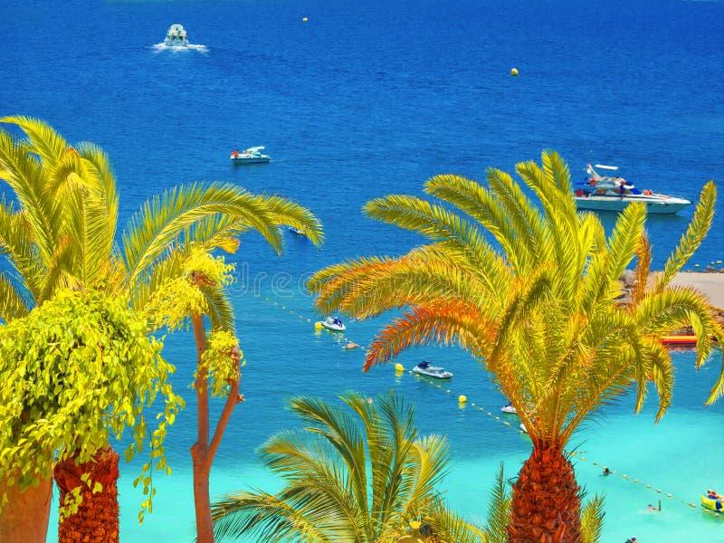 Gran Canaria imagen de archivo libre de regalías