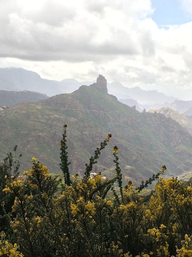 Gran Canaria stockfoto