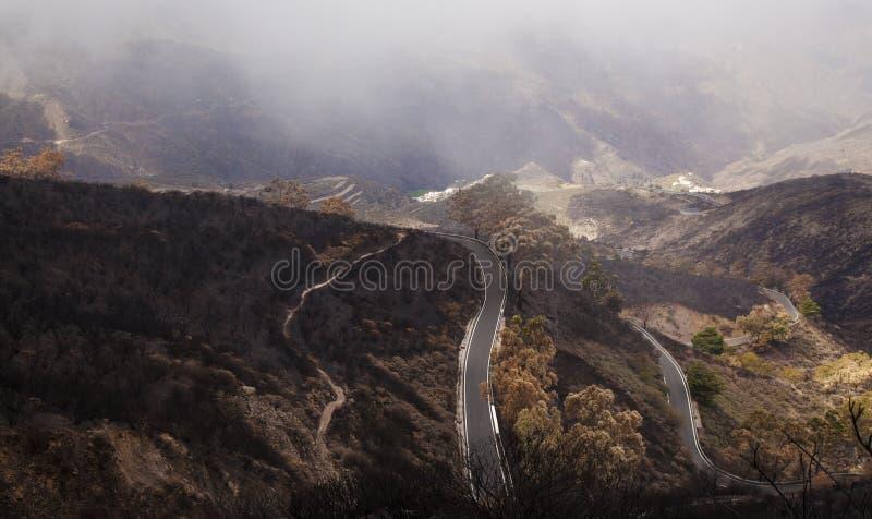 Gran Canaria após o incêndio florestal imagens de stock