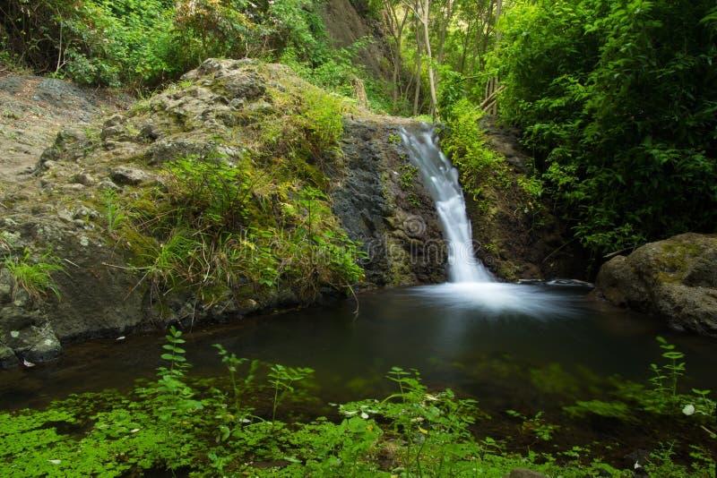 Gran Canaria, Azuaje imagem de stock royalty free