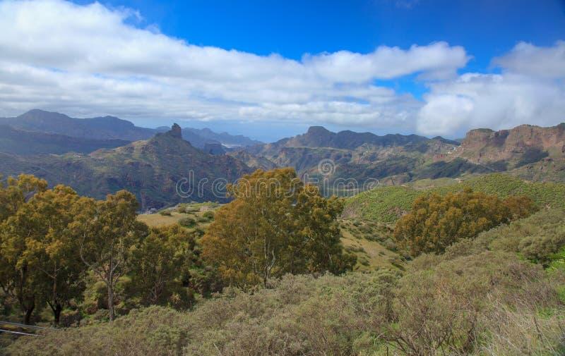 Gran Canaria, Caldera de Tejeda royaltyfria foton