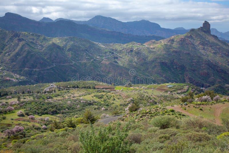 Gran Canaria, Caldera de Tejeda royaltyfri foto