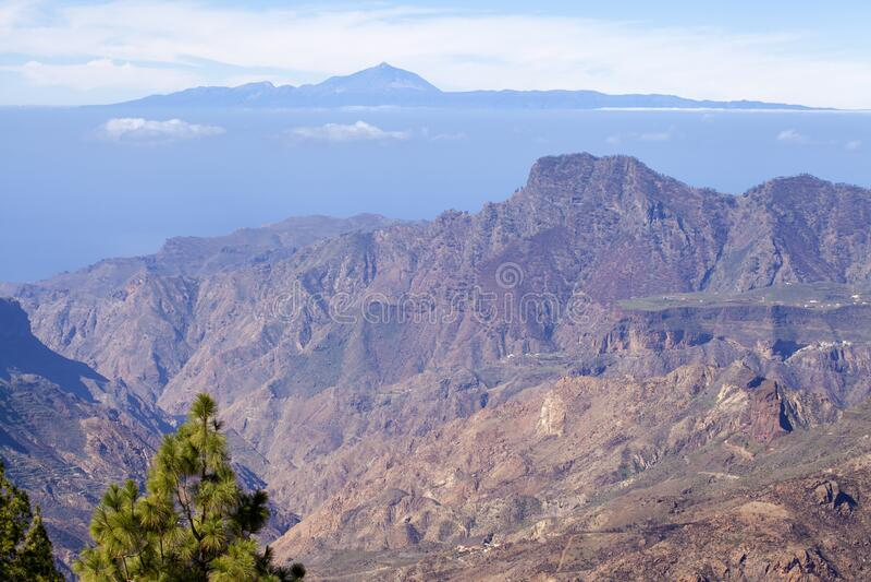 Gran Canaria, januari stock fotografie