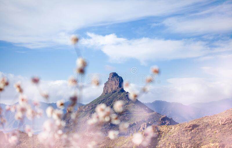 Gran Canaria, januari stock afbeeldingen