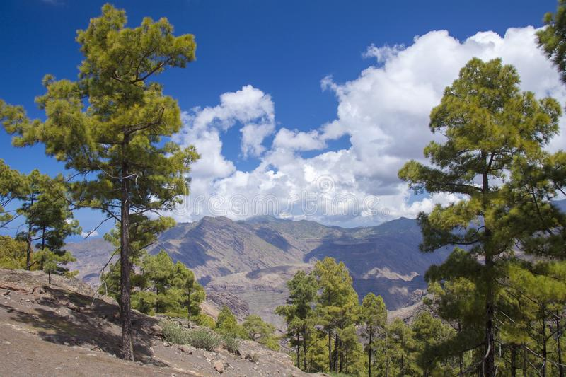 Gran Canaria, Maart royalty-vrije stock foto