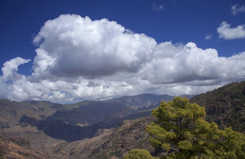 Gran Canaria, Maart royalty-vrije stock fotografie
