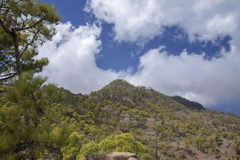 Gran Canaria, Maart royalty-vrije stock foto's