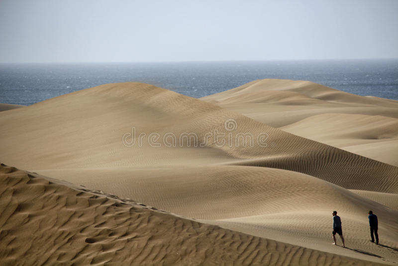 Gran Canaria Maspalomas Sahara Desert Sand Dunes stockfotografie