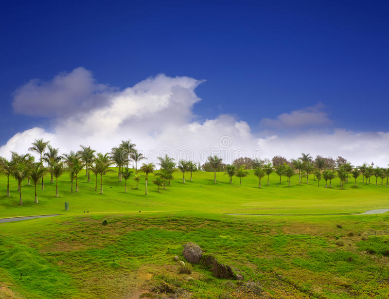 Download Gran Canaria Meloneras Golf Green Grass Stock Photo - Image: 26484850