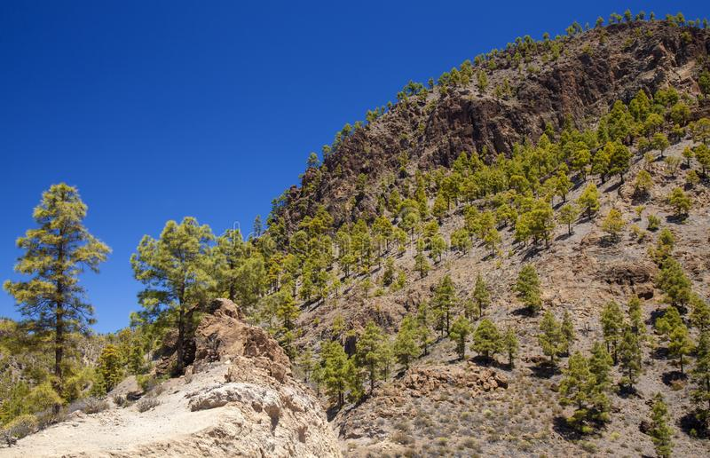Gran Canaria, parc naturel de Pilancones photos stock