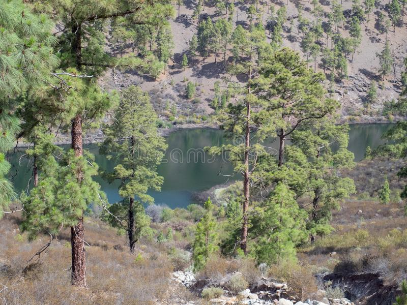 Embalse de Chira lake in Gran Canaria island, Canary Islands. Gran Canaria is the second most populous of the Canary Islands, an archipelago off the Atlantic royalty free stock photo