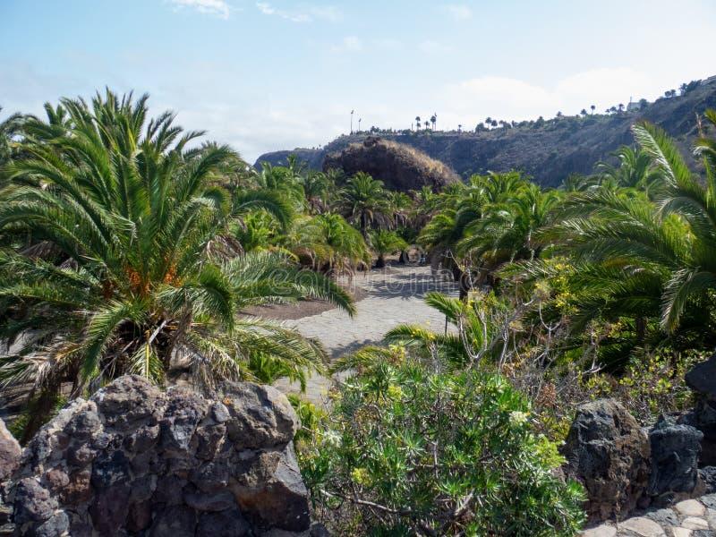 Botanical garden on Gran Canaria. Gran Canaria/Spain - August 9 2019: Jardín Botánico Canario Viera y Clavijo, the full name of the botanical garden on royalty free stock image