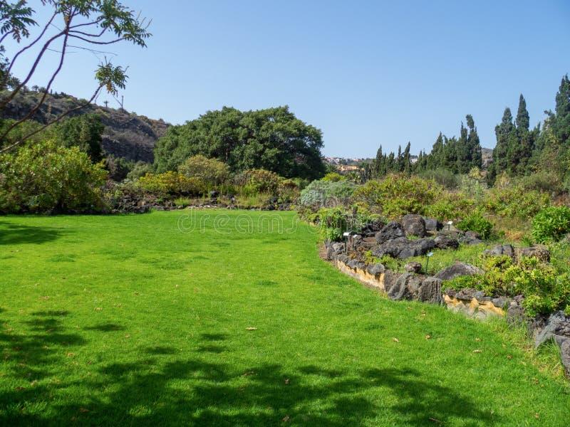 Botanical garden on Gran Canaria. Gran Canaria/Spain - August 9 2019: Jardín Botánico Canario Viera y Clavijo, the full name of the botanical garden on stock photography
