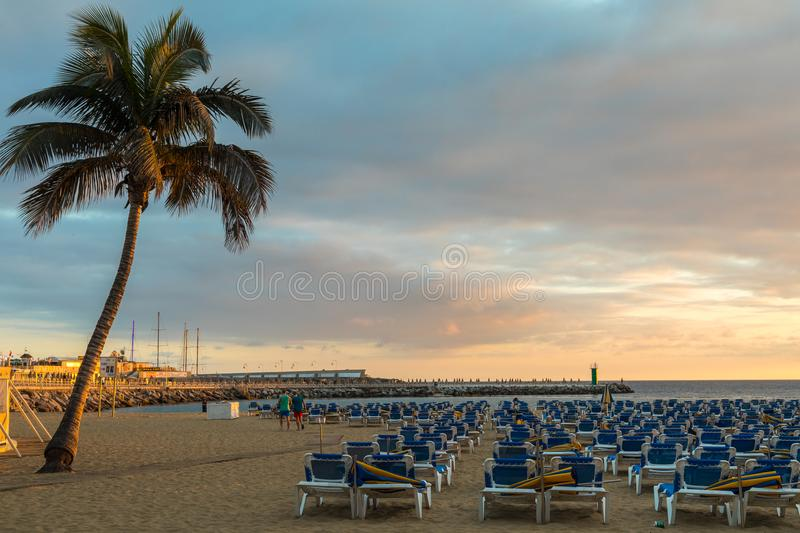 GRAN CANARIA, SPAIN - DECEMBER 10, 2017: Plank walk between palm tree and sunbeds at Puerto Rico Beach in Gran Canaria. GRAN CANARIA, SPAIN - DECEMBER 10, 2017 royalty free stock photography