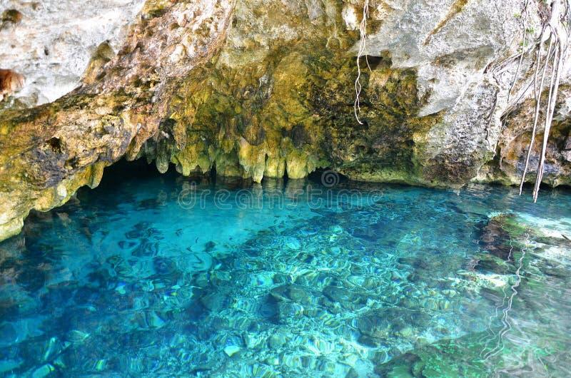 Gran Cenote, Мексика стоковые изображения