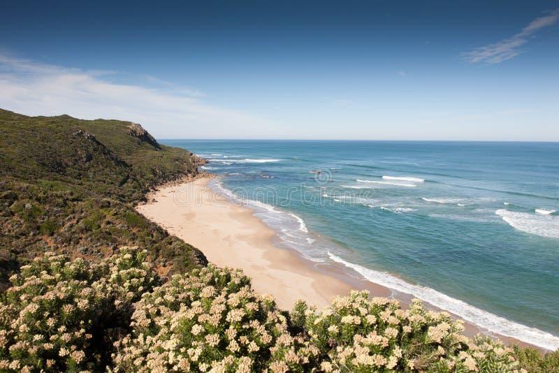 Gran costa del camino del océano fotos de archivo