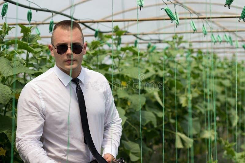 Gran invernadero de las plantas Hombre orgulloso, hombre de negocios moderno en su invernadero y confianza de la sensación foto de archivo libre de regalías