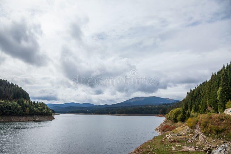 Gran och annat sörjer träd på berg nära Oasa sjön Lacul Oasa på ett molnigt slut av sommar/nedgångeftermiddagen som hänger över e royaltyfria bilder