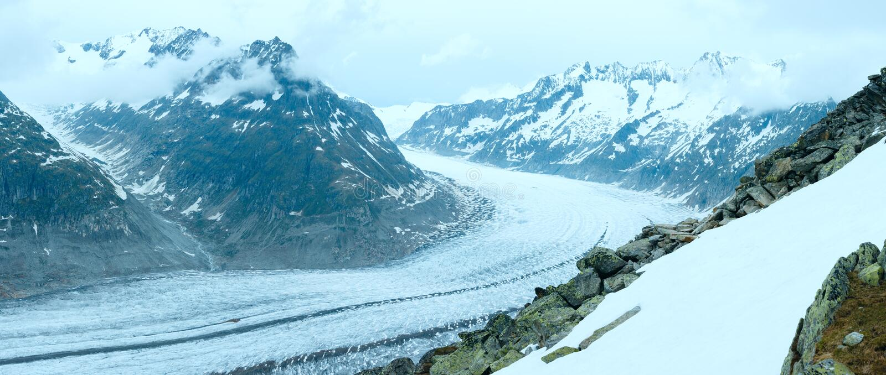Gran panorama del glaciar de Aletsch (Bettmerhorn, Suiza). imagen de archivo libre de regalías