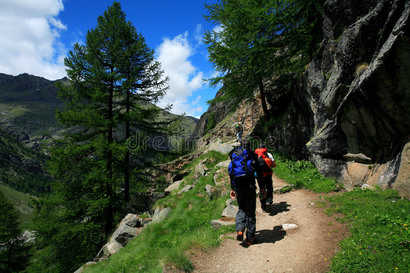 Gran Paradiso. National Park, Italy stock images