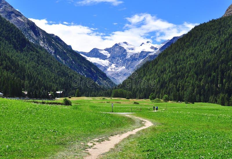 Gran Paradiso, Italy. Gran Paradiso national park, Italy stock photography