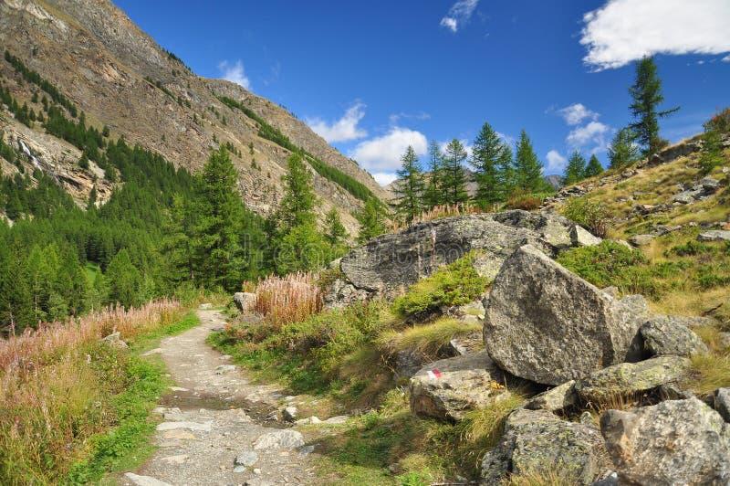 Gran Paradiso national park. Aosta Valley, Italy. Mountain path in the Gran Paradiso national park. Aosta Valley, Italy stock photography