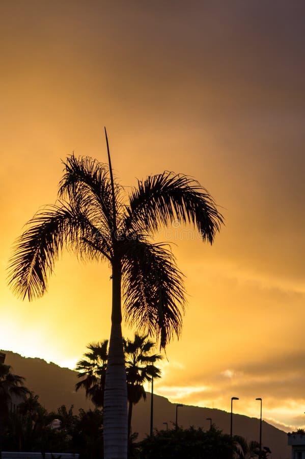Gran puesta del sol foto de archivo libre de regalías
