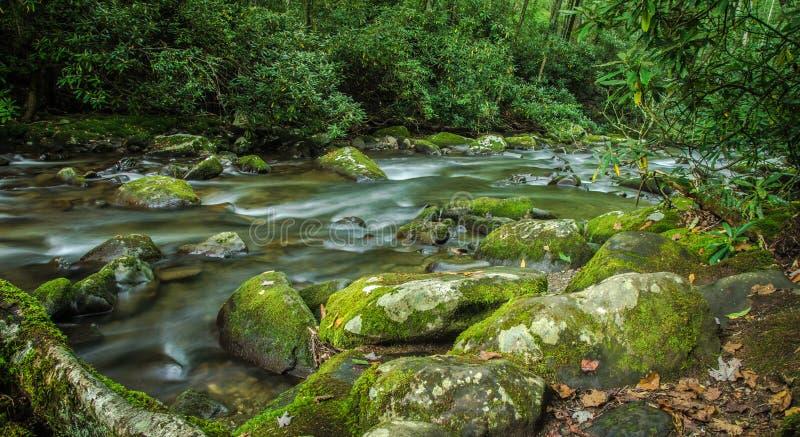 Gran río de la montaña ahumada foto de archivo