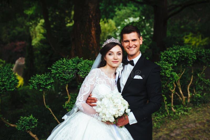 Gran retrato de un par muy hermoso de la boda imágenes de archivo libres de regalías